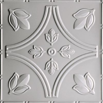Thermoplastic Ceiling Tiles With