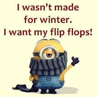 I Wasnu0027t Made For Winter | Minions | Pinterest | Winter, Funny Winter Quotes  And Minions Minions