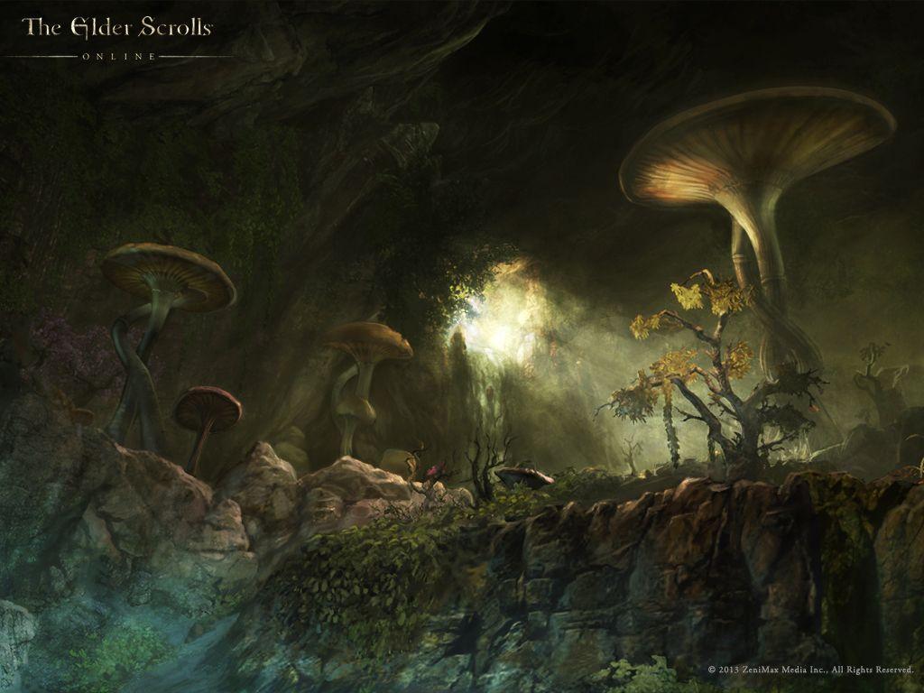Elder Scrolls Online Can T Wait Elder Scrolls Art