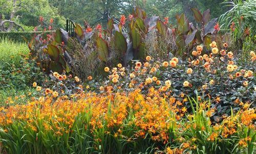 Garden ideas border ideas perennial planting perennial garden ideas border ideas perennial planting perennial combination summer borders fall mightylinksfo