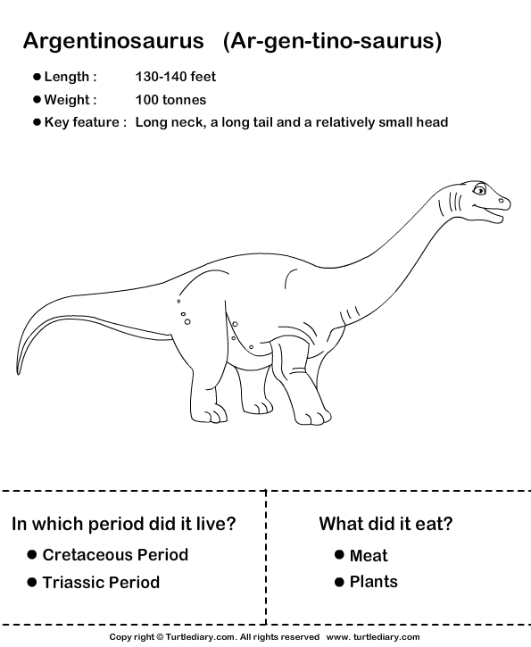 10+ images about learning with dinosaurs on Pinterest | Dinosaur ...