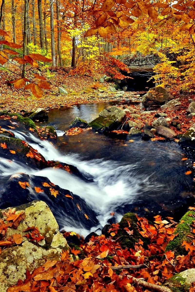 the best of nature photo | Nature photos, Landscape ...