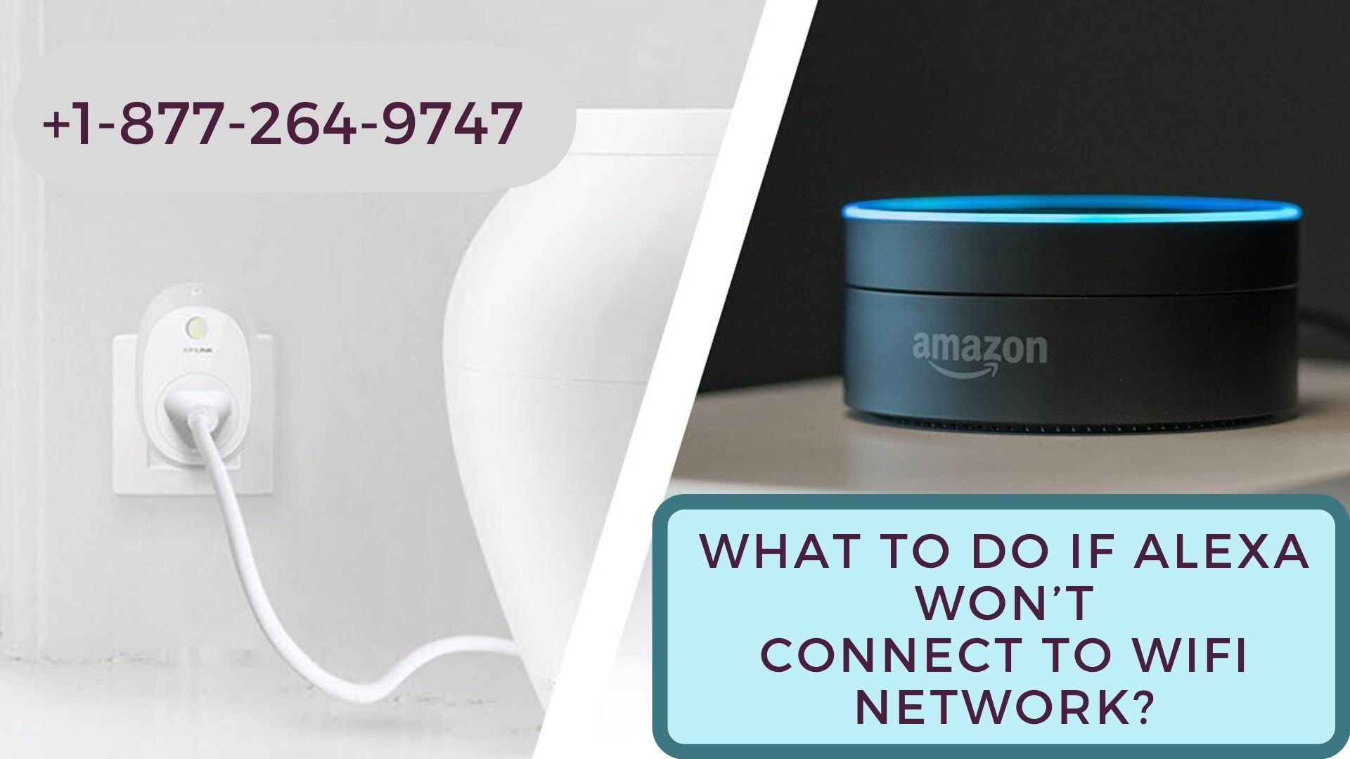Alexa Won T Connect To Wifi 1 877 264 9747 In 2020 With Images Alexa Device Wifi Echo Dot