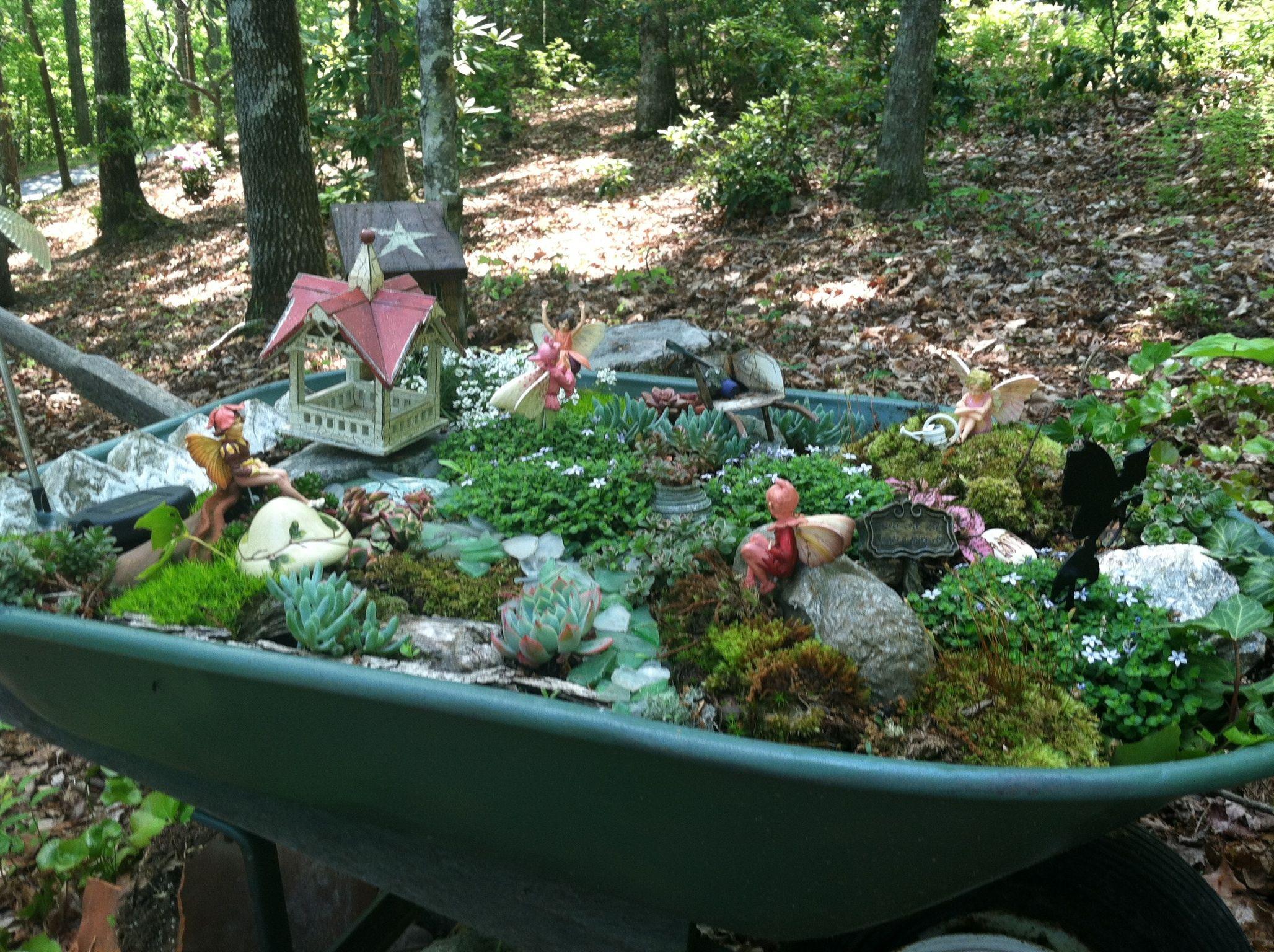 My fairy garden in a wheelbarrow