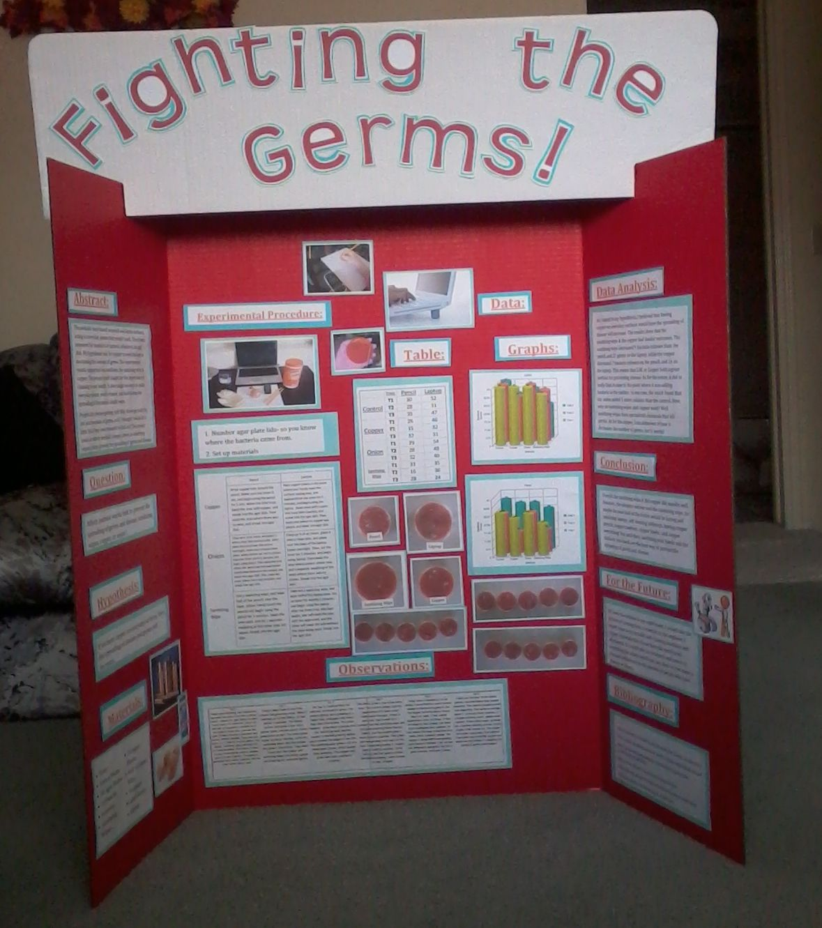 Fighting The Germs Science Fair Stem Fair Projects Science
