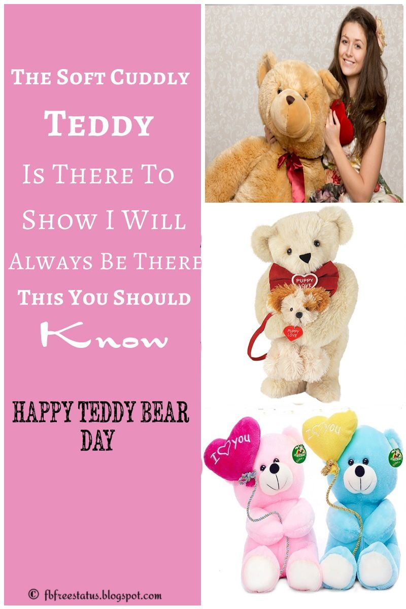 Teddy Day Quotes For Girlfriend And Boyfriend Valentines Day