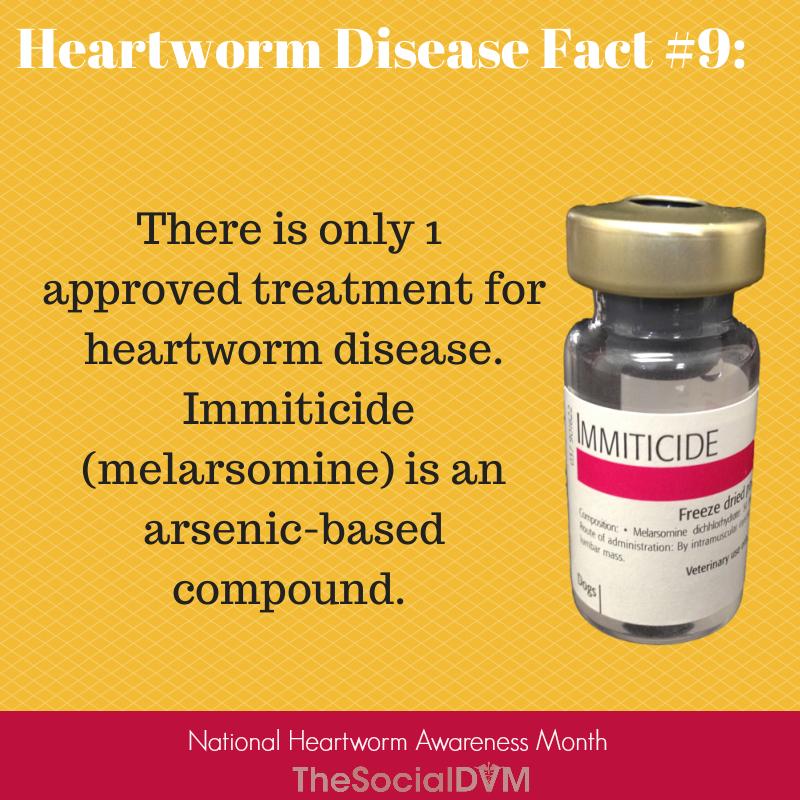 Heartworm Disease Fact 9 Heartworm Disease Heartworm Awareness Heartworm
