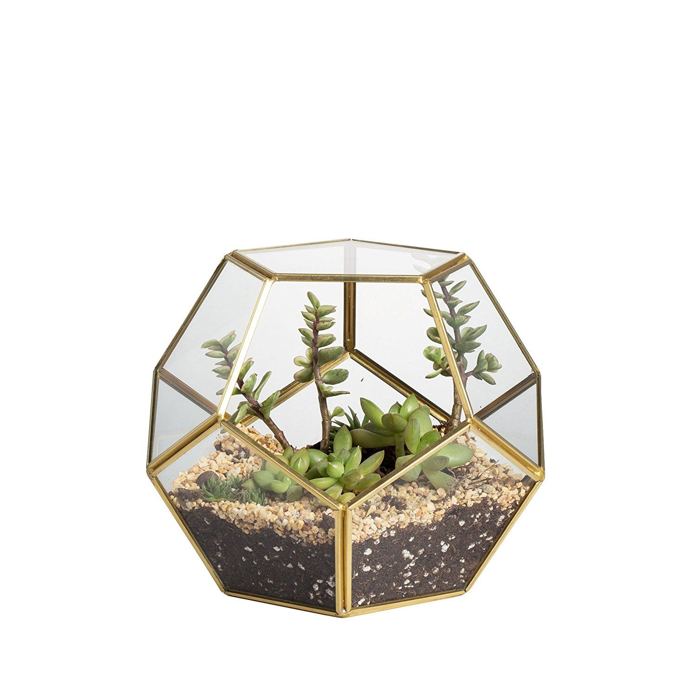 Pyramid Open Metal Glass Geometric Terrarium Succulent Planter Table Decor
