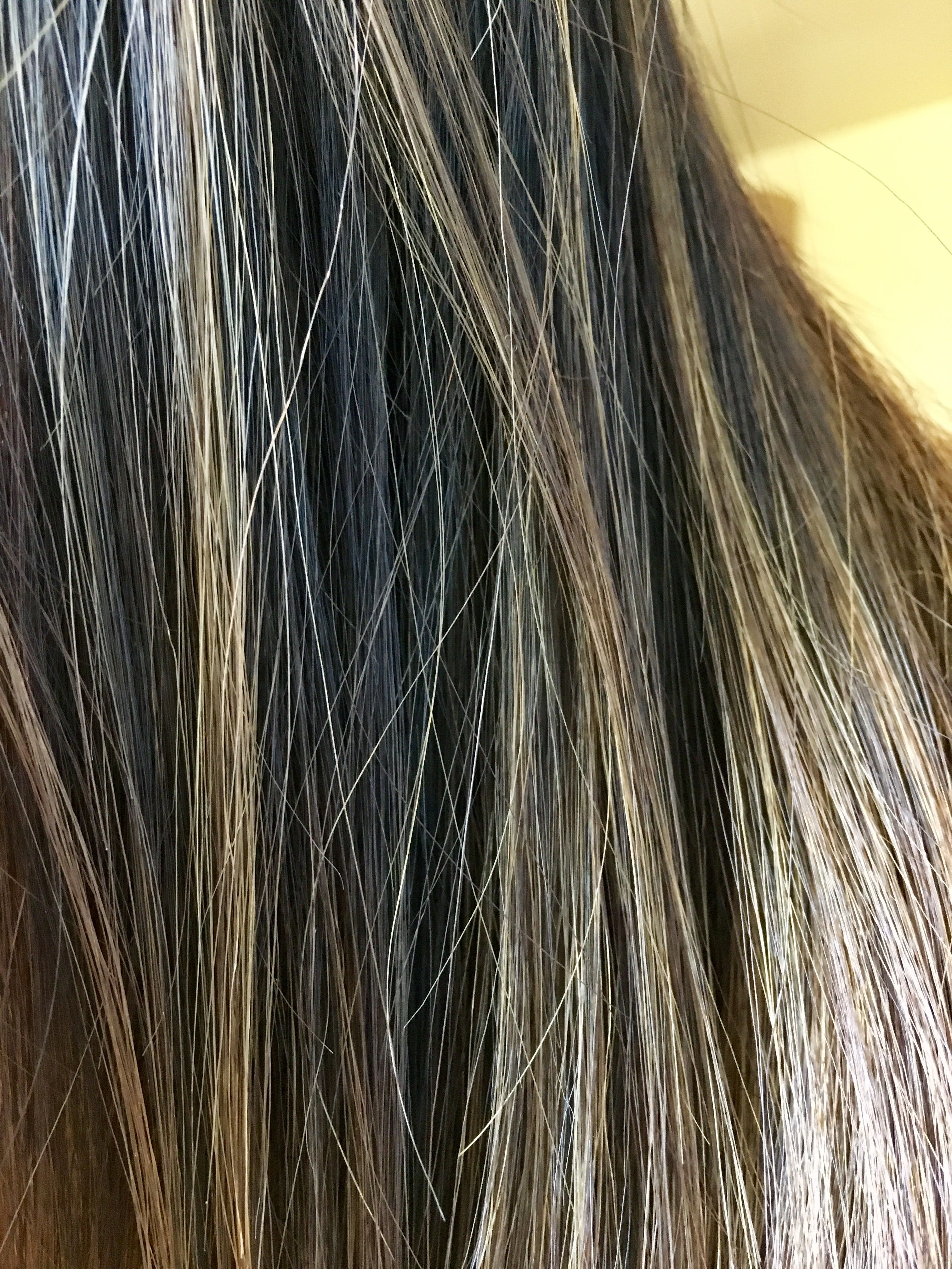 hair blonde brown black ombre balayage highlights strand light sunlight hair color hair. Black Bedroom Furniture Sets. Home Design Ideas