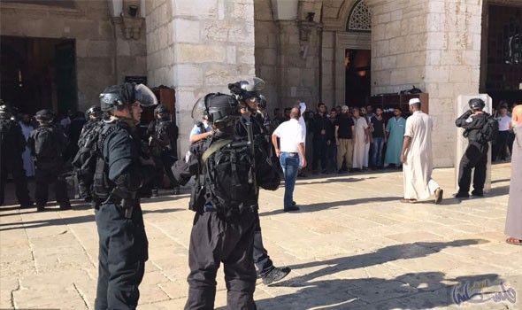 مواجهات بين الاحتلال والمصلين في المسجد الأقصى هي الأعنف منذ أشهر: تحوَّل المسجد الأقصى ومحيطه إلى ساحات اشتباكات، أمس الأحد، بين مصلين…