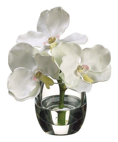 Take a look at this white vanda orchid vase arrangement by for Allstate floral and craft
