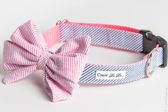 I am OBSESSED! Pink On Blue Seersucker Girl Bow Dog Collar by CrewLaLa on Etsy, $41.00