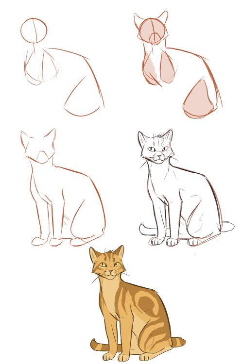 Climbstudio Quick Tutorial On How I Draw Fullbody Cats 1 Start