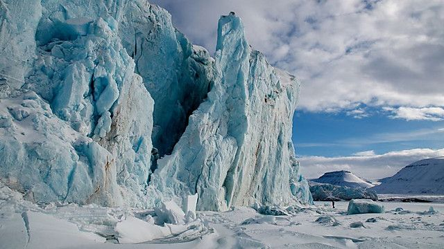 The ultimate portrait of Earth's polar regions: the last great wilderness on the planet.