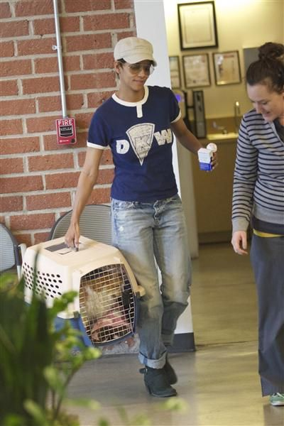 We hope it was just a checkup! Halle Berry took her cat to the vet in Los Angeles on Jan. 23, 2013.RELATED: Stars who are aging in reverse