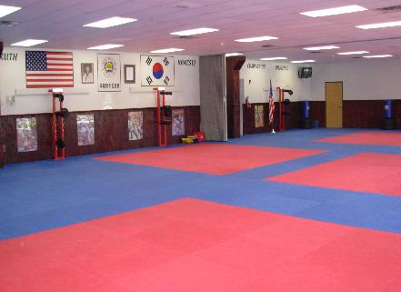 Classic Taekwondo Studio Layout Fight Gym Martial Arts Training Dojo Ideas