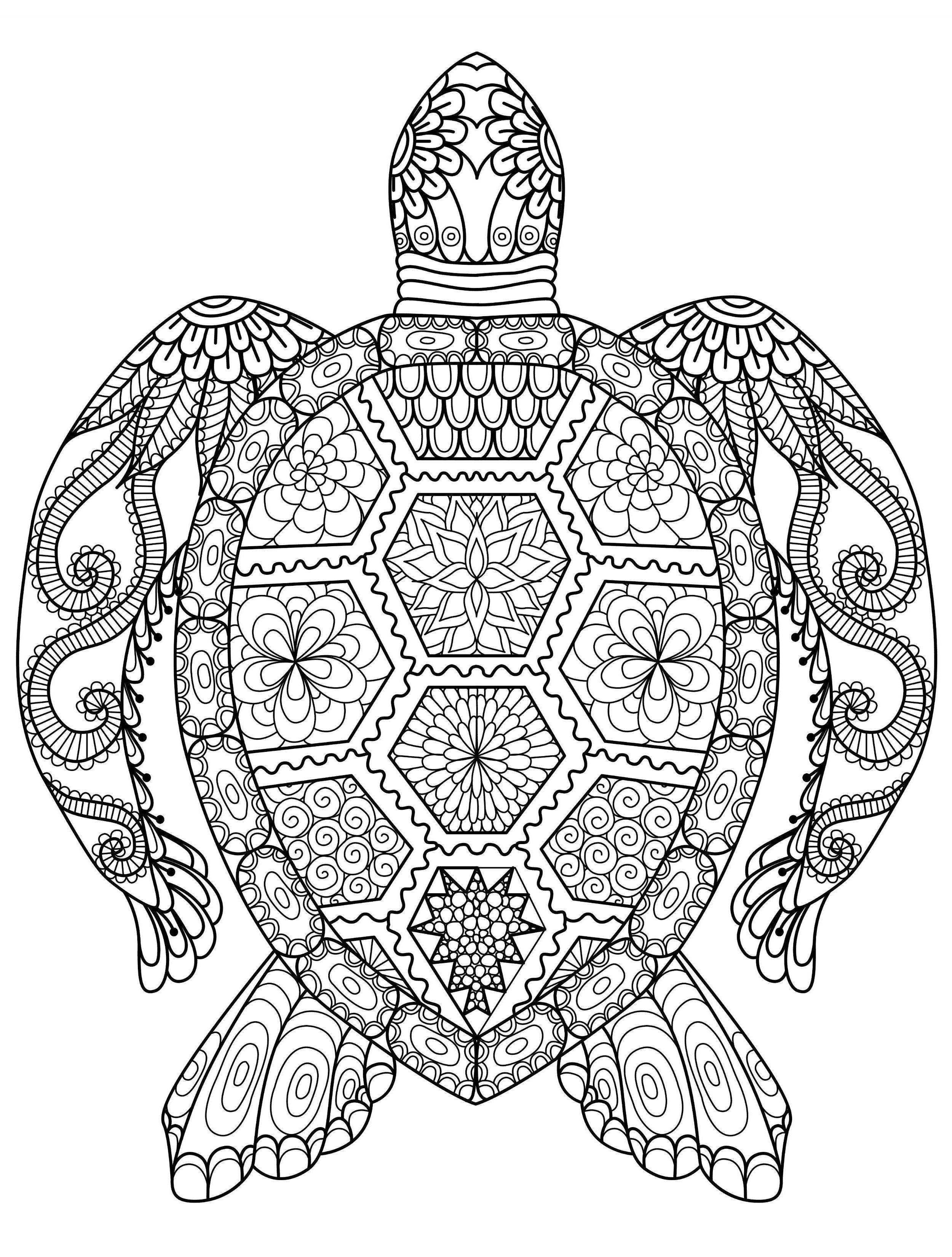 Zen Coloring Pages Turtle Coloring Pages Animal Coloring Books Mandala Coloring Pages