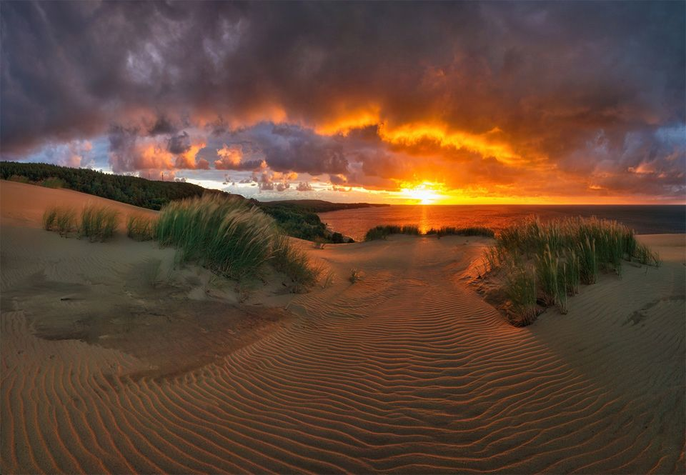 Curonian Spit National Park, Lithuania Photo | National parks ...