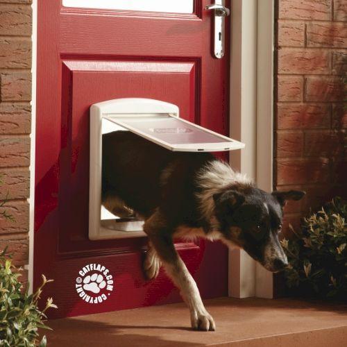 Petsafe Staywell 740 Medium Pet Door Pet Products Pinterest