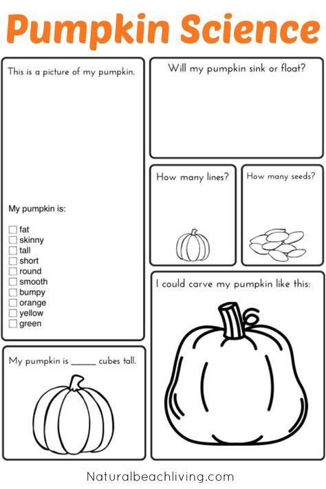 Pumpkin Activities For Kids Pumpkin Theme Lesson Plan Stem