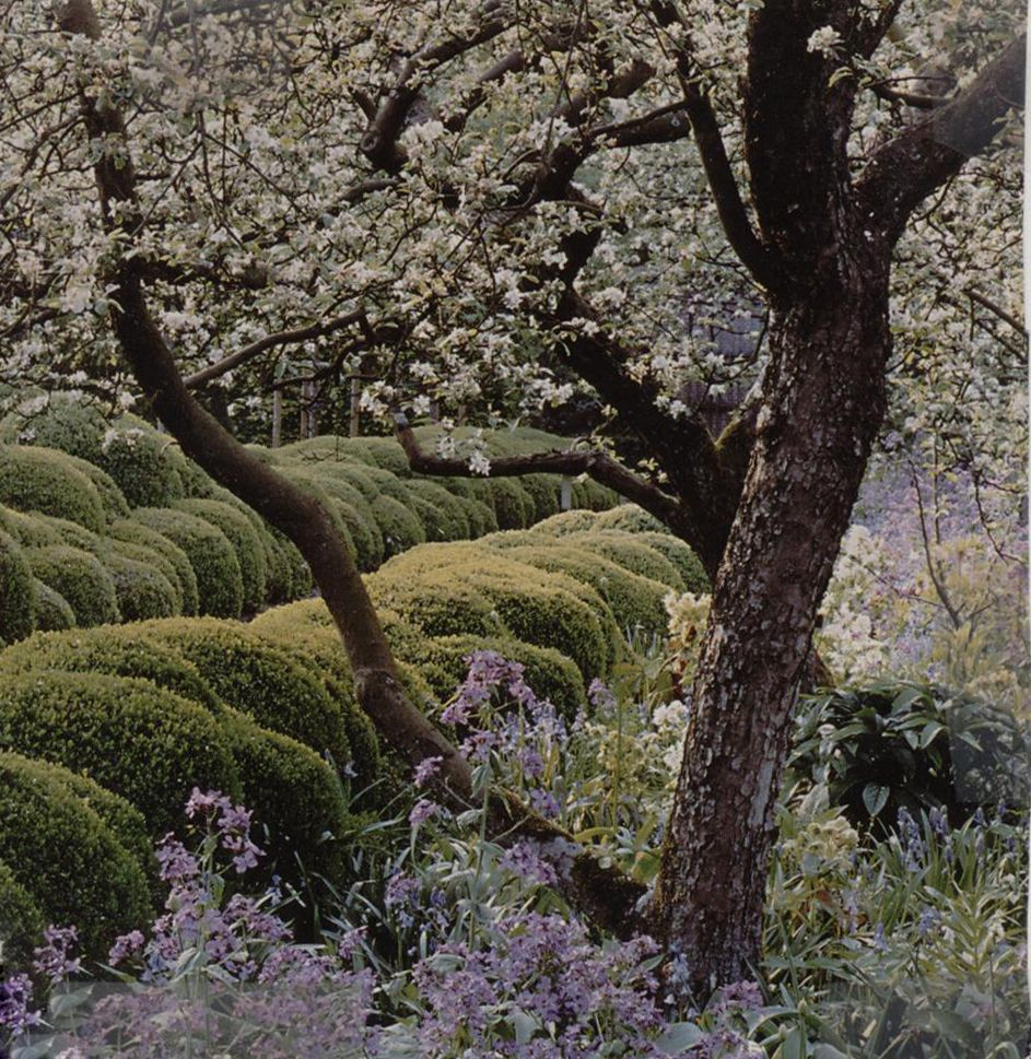 Jacques Wirtz landscape ~ The Wirtz Garden, a renowned private ...