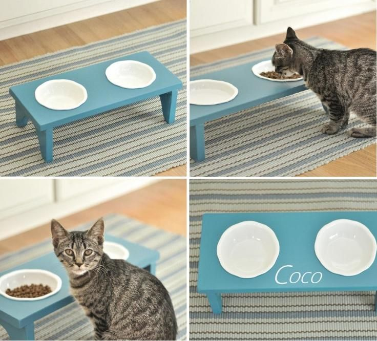 Repurposed table into cat bowl holder. Great way to get food up off the floor.