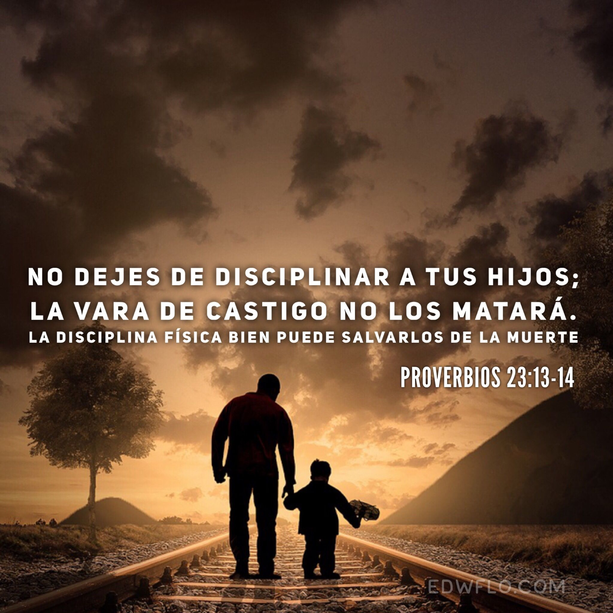 Proverbios 23 13 14 Biblia Proverbios Proverbios Proverbios Biblicos