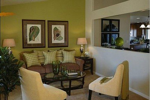 Avocado Green And Brown Living Room