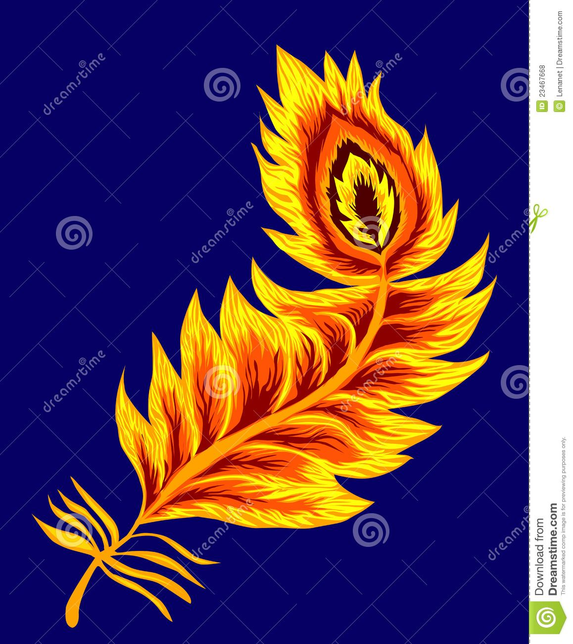 http://thumbs.dreamstime.com/z/phoenix-feather-23467668.jpg