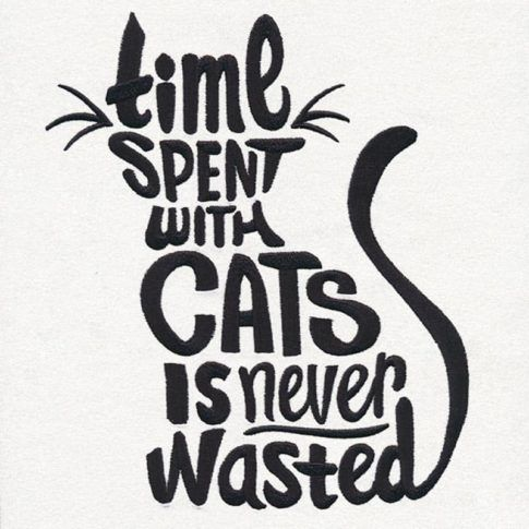 Photo of The 30 Funniest Cat Poster Quotes to Hang on Your Walls