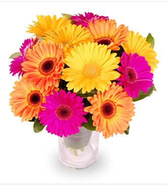 Order This One Dozen Of Vibrant Colorful Gerberas Bouquet For Your Girlfriend On Valentines Day Send That Special Someone A Stylish Same Day Flower Delivery Flower Delivery Flowers Delivered
