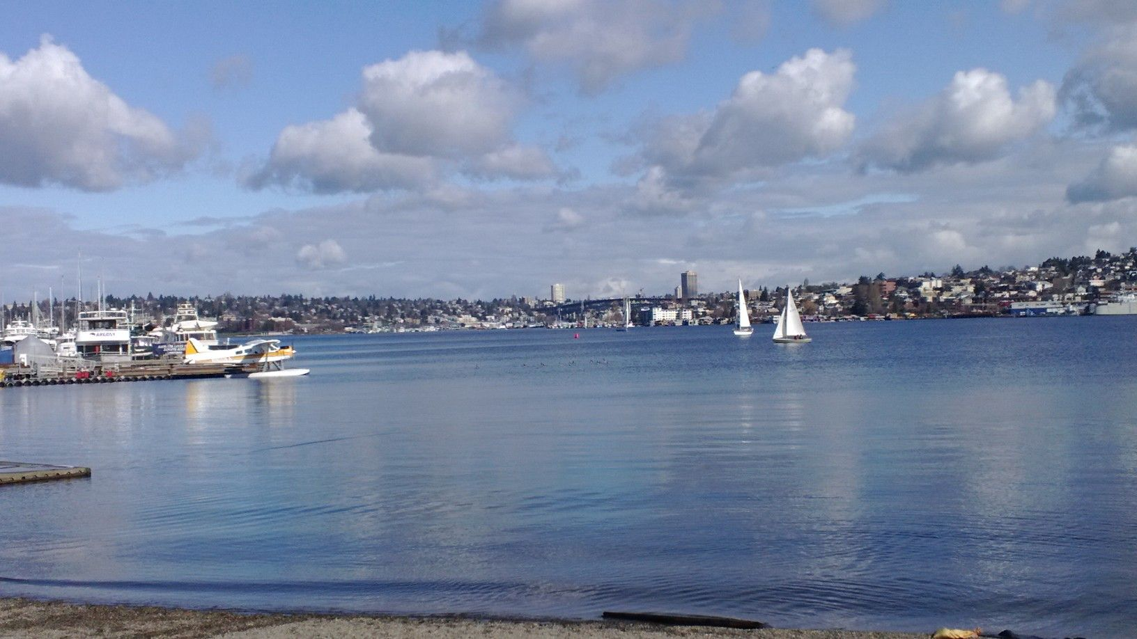 South Lake Union from the shore