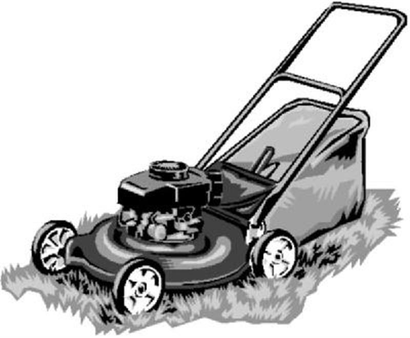 Local Lawn Mower Service