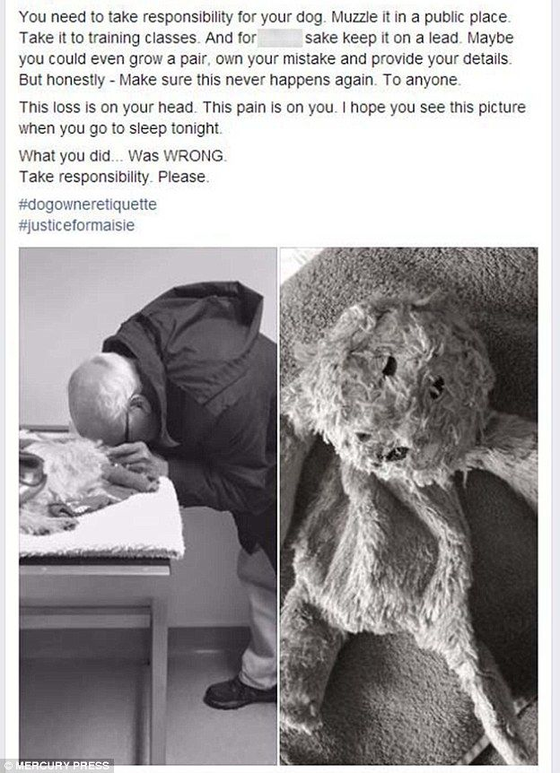 Message: Ms Chidgey posted these photographs on her Facebook page in a bid to get justice