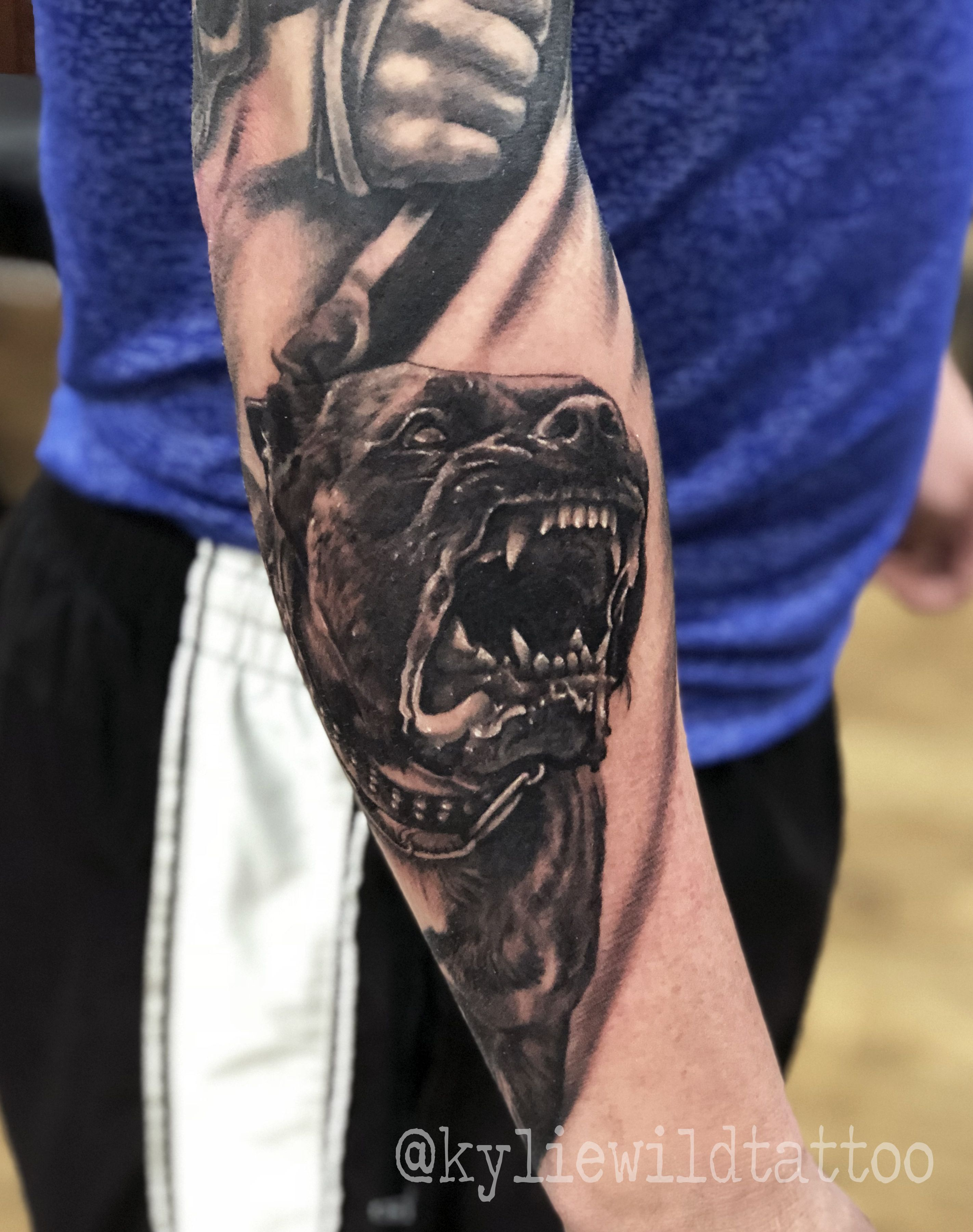 Angry Pitbull Realistic Tattoo Forearm Black And Grey By Kylie Wild Heslop Canberra Australia Based Tat Tatuagem De Pitbull Tatuagem De Gorila Tattoo Pitbull