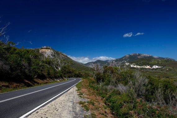 Road To Tidal River by GPNaturePhotos on Etsy