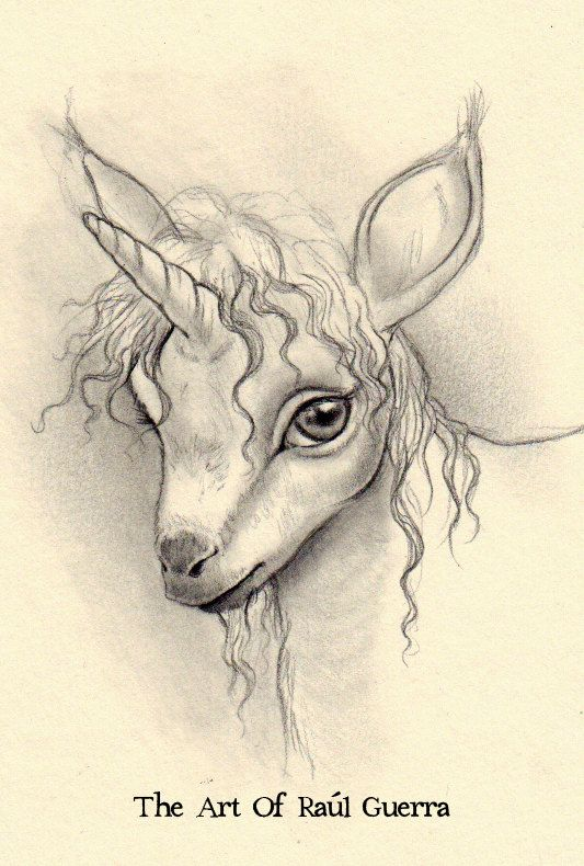 Baby+Unicorn+ACEO+by+raulguerra+on+Etsy,+€30,00 | A B/W UnicornZ ...