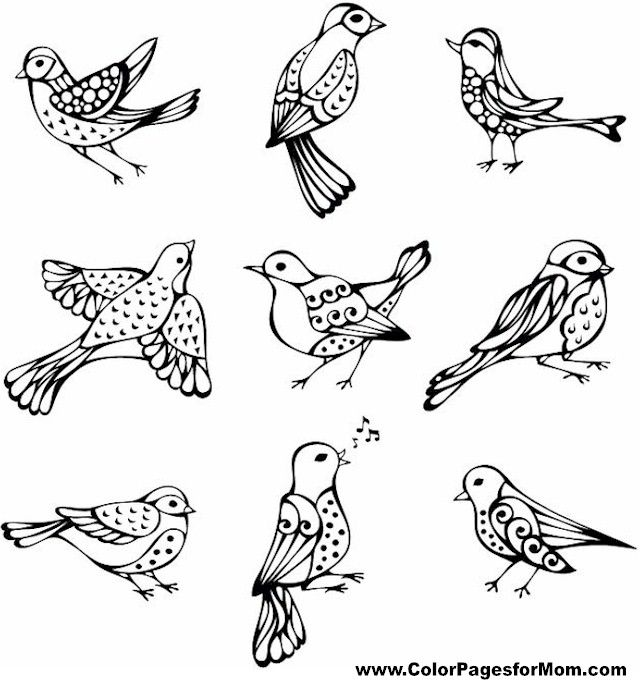 Bird Coloring Page 20 Vintage Birds Bird Coloring Pages Coloring Pages