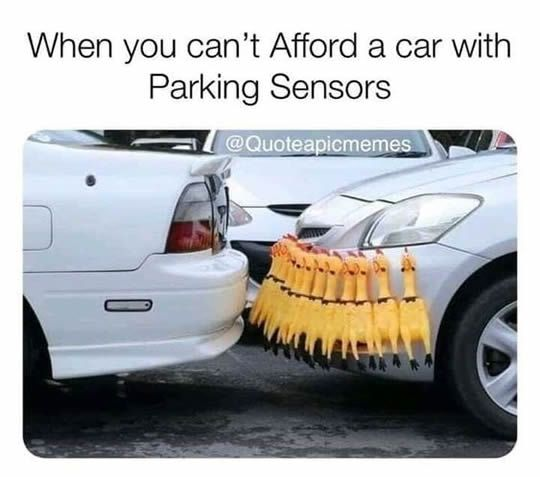 Afford A Car >> 10 Funny Pictures 1 When Tou Can T Afford A Car With