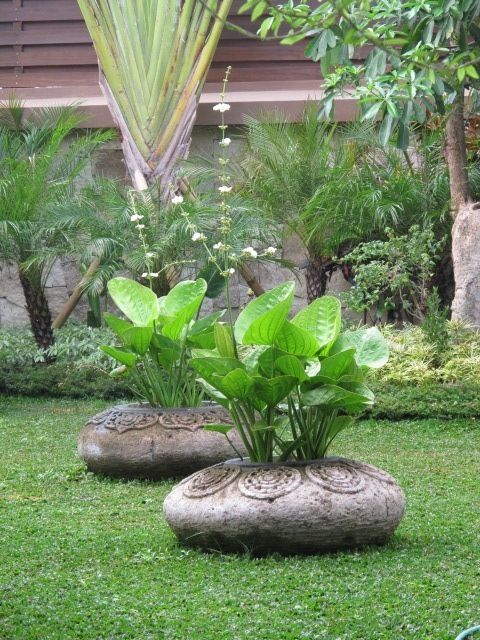 One of the most popular sources for garden/landscape design today are coming from Bali, Indonesia. Simply gorgeous use of native design patterns on pots and heavy use of tropical aquatic plants such as Lotus and Thalia. www.ContainerWaterGardens.net