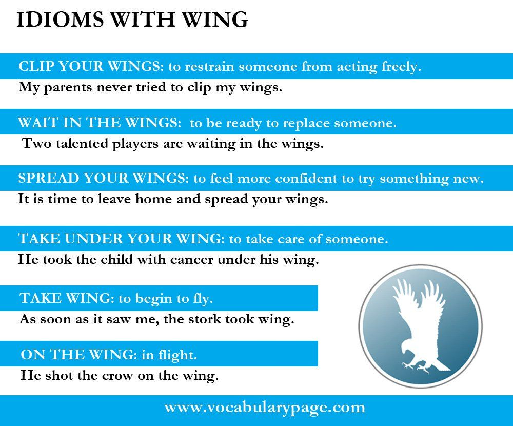 Idioms with WING