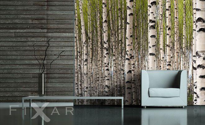 Der Geruch der Birken Fototapete fürs Wohnzimmer Pinterest - tapeten fürs wohnzimmer