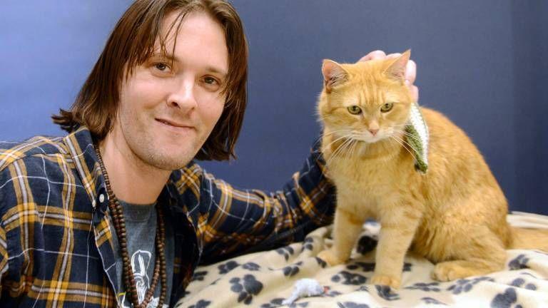 James Bowen 36 Signierte Bucher Bob Posierte Fur Selfies Street Cat Bob Cats A Cat Named Bob