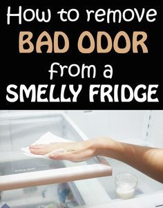 How To Remove Bad Odor From A Smelly Fridge   101CleaningTips.net