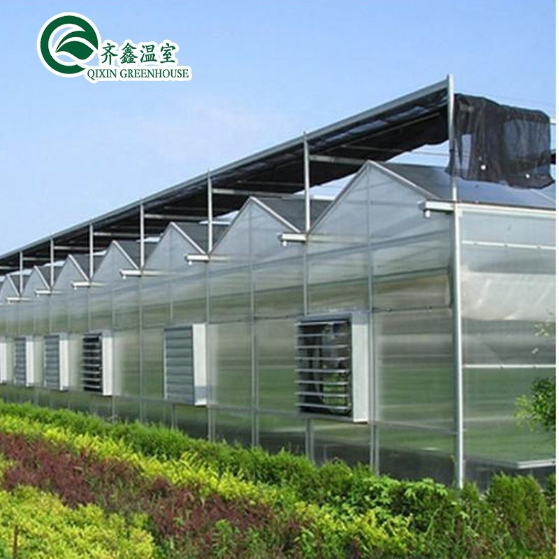 High Quality Hydroponics Fodder Growing Systems Pc Sheet Green