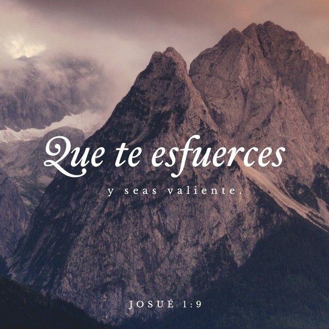 Jehová es la fortaleza de mi vida. Frases de la biblia