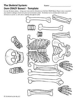 really fun project for my students to get familiar with bones of, Skeleton