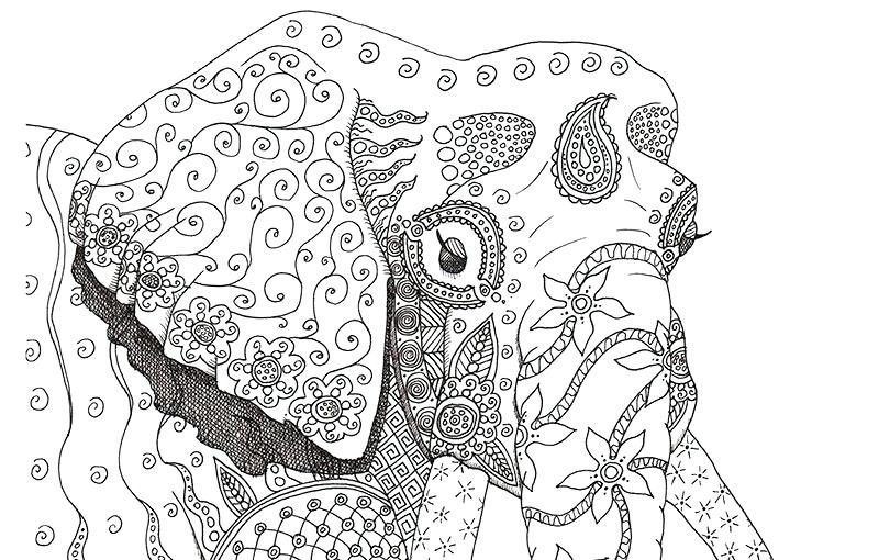 Difficult Coloring Pages Animals Kids Coloring Free Difficult Elephant Coloring Page Coloring Pages Coloring Pictures Of Animals