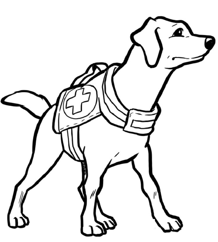 Animal Rescue Coloring Pages Dog Coloring Page Animal Coloring Pages Valentines Day Coloring Page