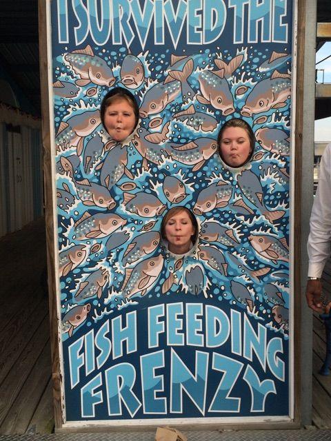 Feed the fish at the Fairfield Bay Marina! #VisitArkansas #NorthCentralArkansas